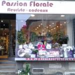 Passion flo2